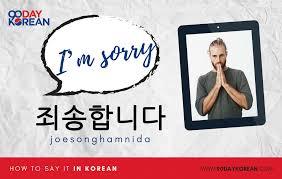 죄송합니다 joesonghamnida how to say i m sorry in korean formal
