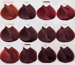 Majirel Color Chart 2019 Loreal Majirel Hair Color Chart Pdf Hair Coloring