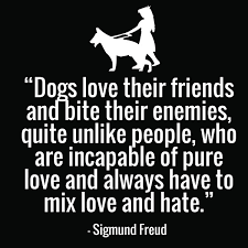 Black And White Picture Quotes Cool 48 Funny Dog Quotes With Images Good Morning Quote
