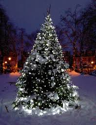 christmas outdoor lighting ideas. white lights on snowy tree christmas outdoor lighting ideas a
