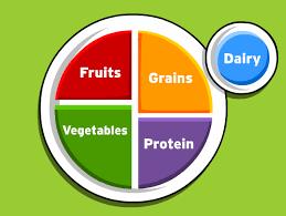 Food Pyramid Project Nutrition Brainpop