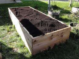 yuf custom soil blend ready in one of our 24 tall raised beds