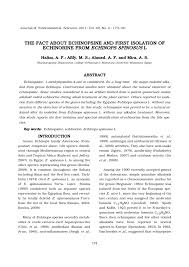 (PDF) The fact about echinopsine and first isolation of echinorine ...