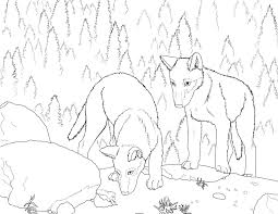 Small Picture Wolf Puppy Coloring Pages Coloring Pages