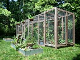 squirrel proof wood structure for suburban gardening