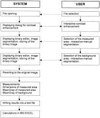 Image Cytometry Flow Chart Of Image Processing The Image