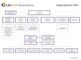 Medical Center Organizational Chart Hospital Supply Chain Organizational Chart Best Picture Of