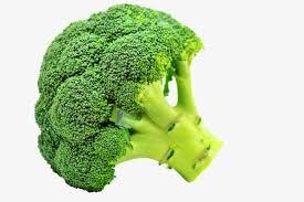 broccoli clipart. Contemporary Broccoli Broccoli Broccoli Clipart Fresh PNG Image And Clipart To