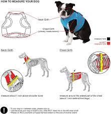 Puppia Soft Dog Harness Sizing Chart Puppia Soft Vest Dog Harness Royal Blue Small