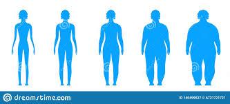Creative Vector Illustration Of Bmi Body Mass Index