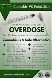 Sophisticated Than Lives Vs Overdose Awareness Painkillers Alternative Saving A Cannabis Dies Someone Highly Much From Are Is 25 Minutes Opiate Toxic Raising Prescription Addictiv Safe Every Less Opiates