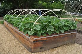 Small Picture Raised Garden Bed Plans For Vegetables Best Garden Reference