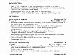 Beautiful Resume Examples Teenager First Job Gallery Entry Level