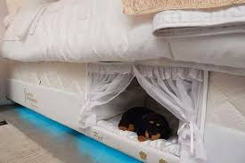 This miniature pet bed inside a regular bed from Brazilian company Colcho  Inteligente Postural is so great that we wish there was a human sized  version of ...