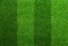 similar images green grass soccer field8 green