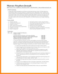 It Resume Summary Statement Examples Resume Peppapp