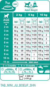 Royal Canin Diet Chart Royal Canin Mini Junior Feeding Chart Best Picture Of