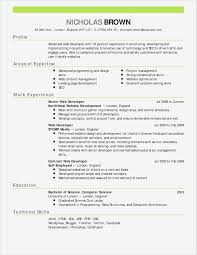 Functional Resume Templates Microsoft Word Luxury Resume Format