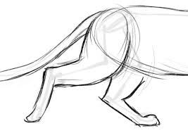 How To Draw A Cat Creative Bloq