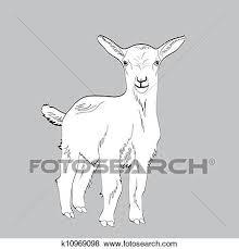 かわいい 若い 白いヤギ イラスト イラスト
