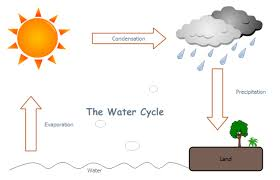 water cycle   free water cycle templatesto create k  education  you can learn