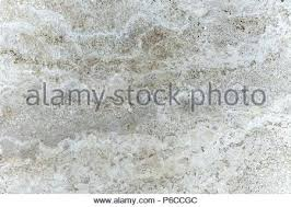 polished concrete floor texture seamless. Fine Concrete Polished Concrete Floor Texture Outdoor Cement  Background Stock Photo   And Polished Concrete Floor Texture Seamless T