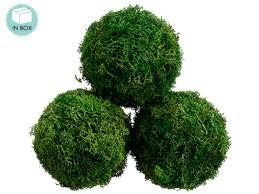 Decorative Moss Balls Decorative Preserved Moss Balls in Greenjpg Moss Pinterest 17