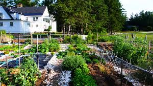 Kitchen Gardens Macdowell Kitchen Garden