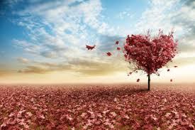Image result for रूहानी प्यार के चित्र