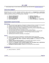 Resume Executive Summaries Executive Summary Sample For Resume Resume Sample
