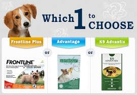 frontline plus vs advantix. Beautiful Frontline Frontline Plus Vs Advantage K9 Advantix To Vs E