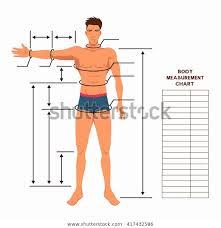 Bodybuilding Body Measurement Chart Male Body Measurement Chart Scheme Measurement Stock Vector