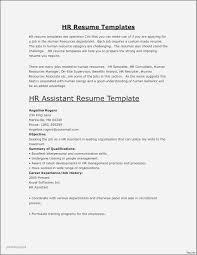 Sample Resume Hr Executive Experience Beautiful Photos Resume Senior