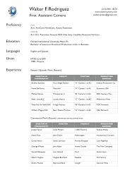 Lovely Different Formats For A Resume Contemporary Entry Level