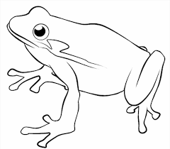 Small Picture Printable For Kids In Draw A Frog Frog To Color To Color Free