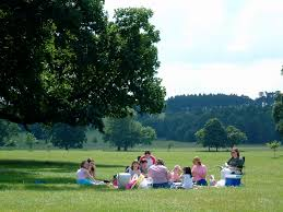 Weston Park Picnic | A sublime Sunday afternoon picnic. | Mark McQuitty | Flickr