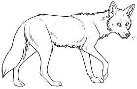 Small Picture New Coyote Coloring Page 94 For Your Download Coloring Pages with