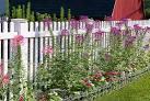 356Ограждение сада своими руками