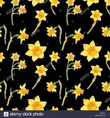 Daffodil Paper Flower Pattern Watercolor Botanical Realistic Floral Pattern With Narcissus Bright