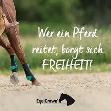 Wer Ein Pferd Reitet Borgt Sich Freiheit Equicrown Ihr Partner In