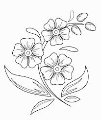 Draw A Design Flower Drawings For Kids Beautiful Flower Drawings Easy