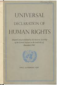 universal declaration of human rights essay our work the universal declaration of human rights essay