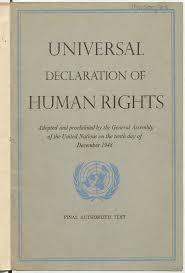 universal declaration of human rights essay our work the universal declaration of human rights essay