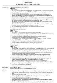 Case Analyst Resume Samples Velvet Jobs