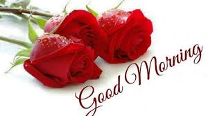good morning flowers images for whatsapp free good morning flower to friend