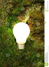 Green Energy Lighting Green Energy Light Bulb Stock Photo Image Of Plant