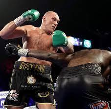 K.-o.-Sieg gegen Wilder: Tyson Fury ist ...