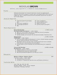 Web Developer Resume Sample Examples 20 Resume Format Experienced