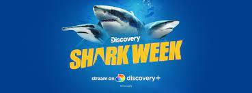 Shark Week - Fotos