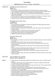 Quality Consultant Resume Samples Velvet Jobs